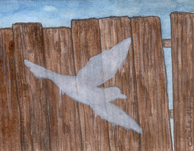 [ White bird, © 2014 Cécile Matthey ]