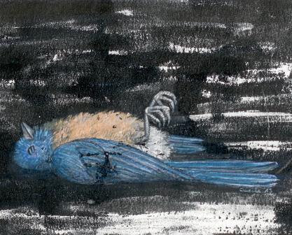 [ Bluebird, © 2013 Cécile Matthey ]