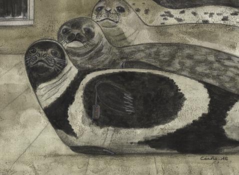 [ Seals, © 2016 Cécile Matthey ]