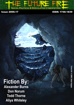 [ Issue 2009.17; Cover art © 2009 Robin Kaplan ]