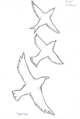 [ Flock, © 2020, Joyce Chng ]