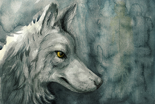 [ Wolf, © 2015, Laura-Anca Adascalitei ]