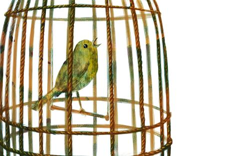 [ Songbird, © 2016 Laura-Anca Adascalitei ]