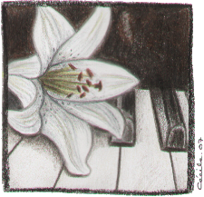 [ The Lily © 2007 Cécile Matthey ]