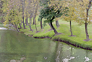 [ Riverbank: image (cc) 2005 Djibril ]