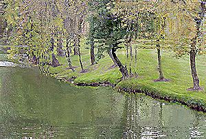 [ Riverbank blocked: image (cc) 2005 Djibril ]